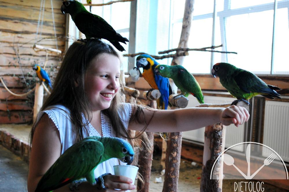 papugarnia i Milena