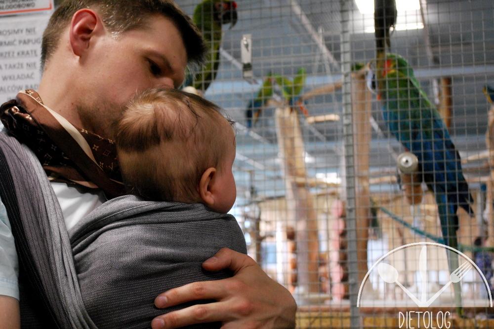 papugarnia i niemowlak