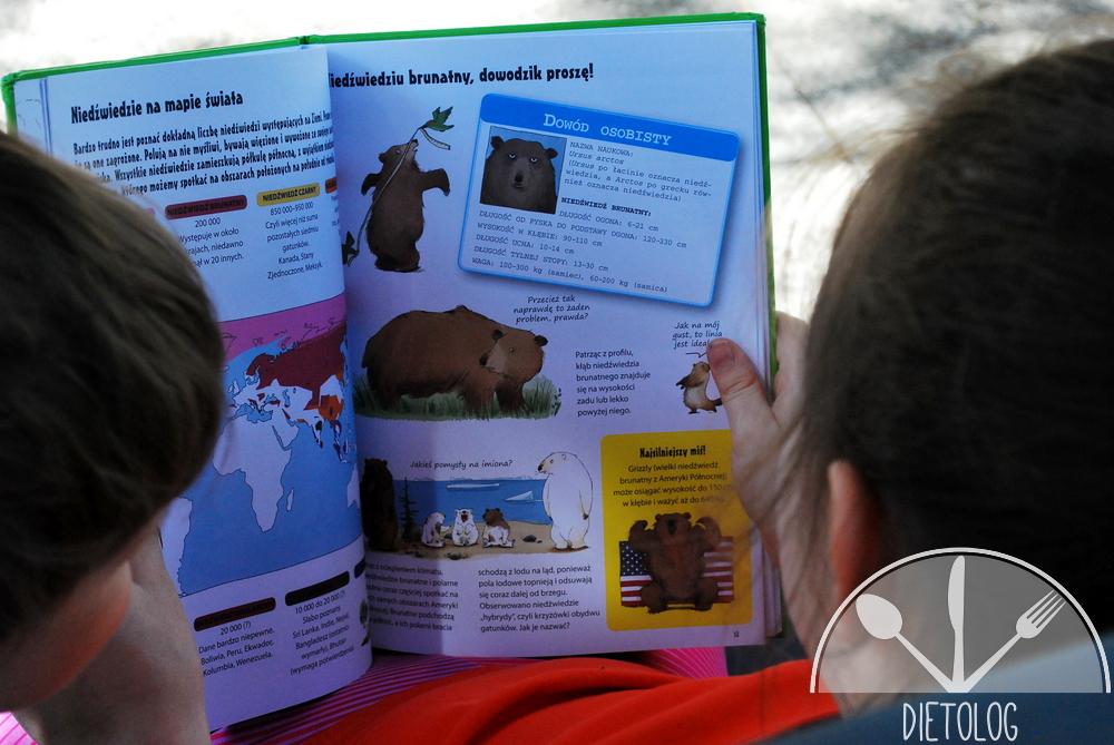 niedźwiedzie na mapie świata