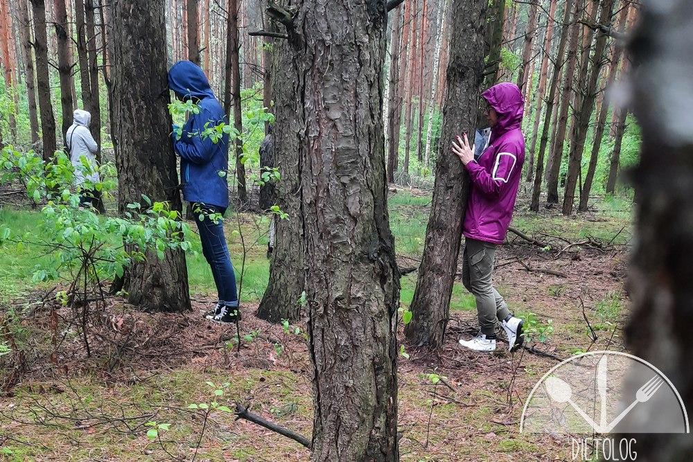 kąpiele leśne medytacja drzewa